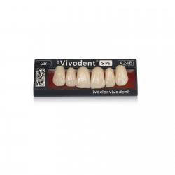 SR Vivodent S PE Anterior Denture Teeth set of 6 U A27 1C